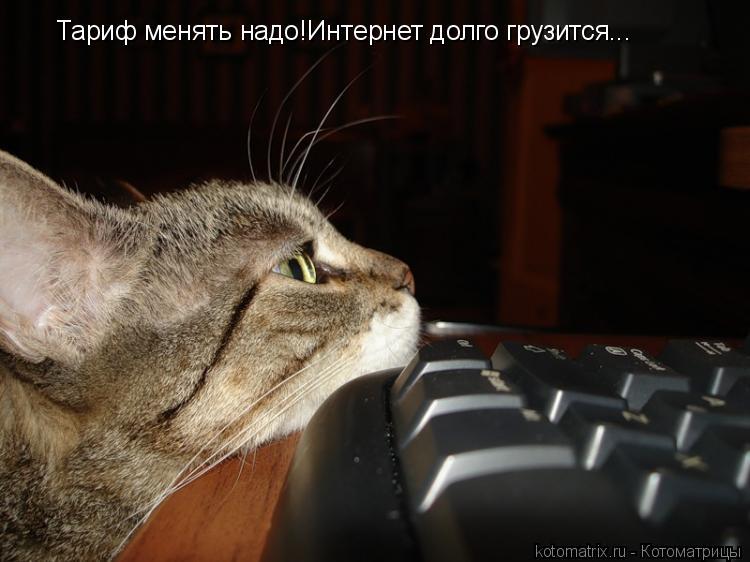 Котоматрица: Тариф менять надо!Интернет долго грузится...