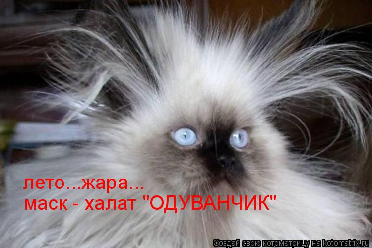 "Котоматрица: лето...жара... маск - халат ""ОДУВАНЧИК"""