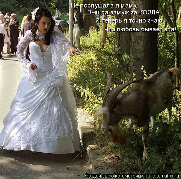 Не послушала я маму, Вышла замуж за КОЗЛА, И теперь я точно знаю, Что любовь бывает зла!