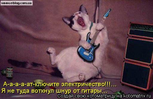 Котоматрица: А-а-а-а-ат-ключите электричество!!!... Я не туда воткнул шнур от гитары...
