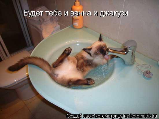 Котоматрица: Будет тебе и ванна и джакузи