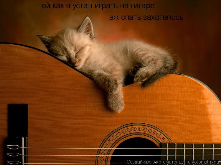 Котоматрица: ой как я устал играть на гитаре аж спать захотелось
