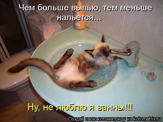 Котоматрица: Чем больше выпью, тем меньше  нальется... Ну, не люблю я ванны!!!