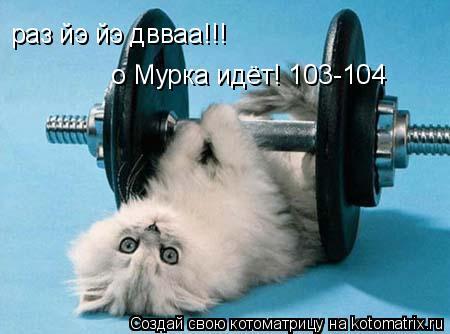 Котоматрица: раз йэ йэ двваа!!! о Мурка идёт! 103-104