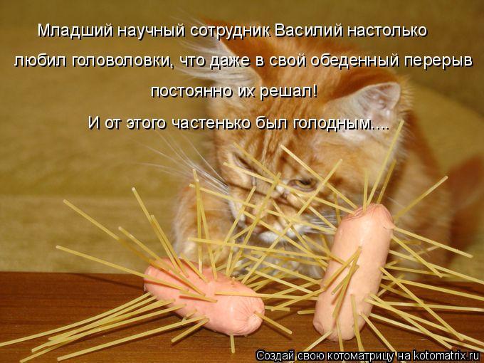 Котоматрица: Младший научный сотрудник Василий настолько любил головоловки, что даже в свой обеденный перерыв постоянно их решал! И от этого частенько