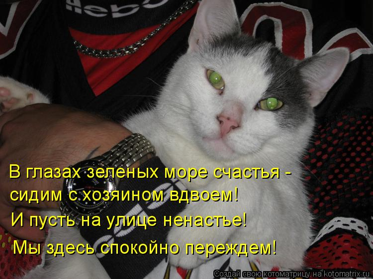 Котоматрица: В глазах зеленых море счастья - сидим с хозяином вдвоем! И пусть на улице ненастье! Мы здесь спокойно переждем!