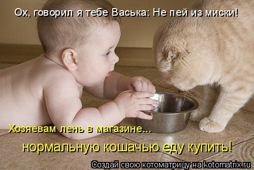 Котоматрица: Ох, говорил я тебе Васька: Не пей из миски!  Хозяевам лень в магазине... нормальную кошачью еду купить!