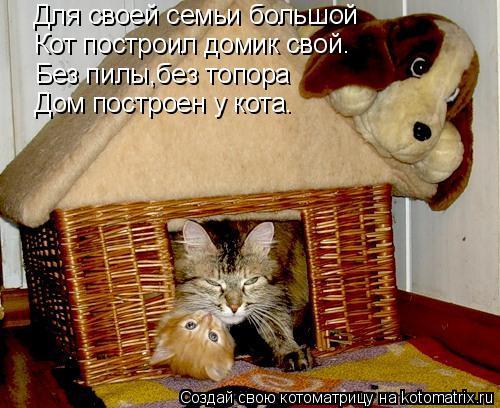 Котоматрица: Для своей семьи большой Кот построил домик свой. Без пилы,без топора Дом построен у кота.