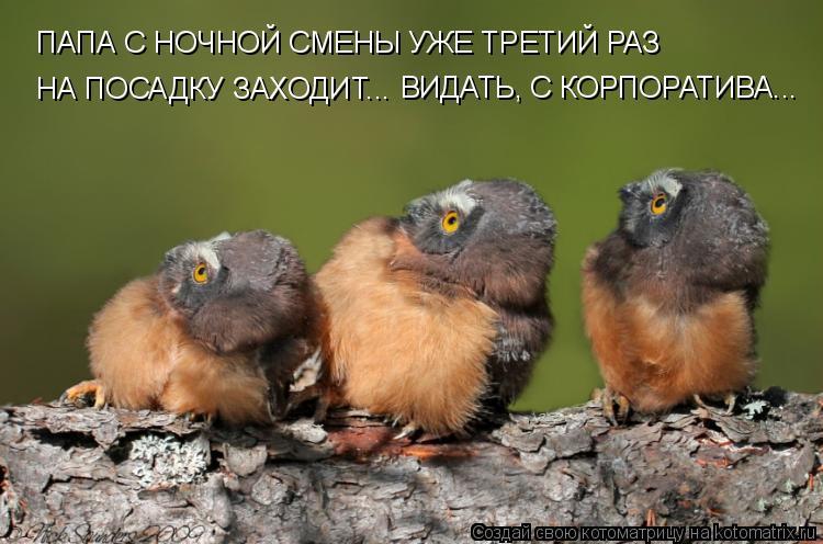 http://kotomatrix.ru/images/lolz/2009/06/18/T.jpg