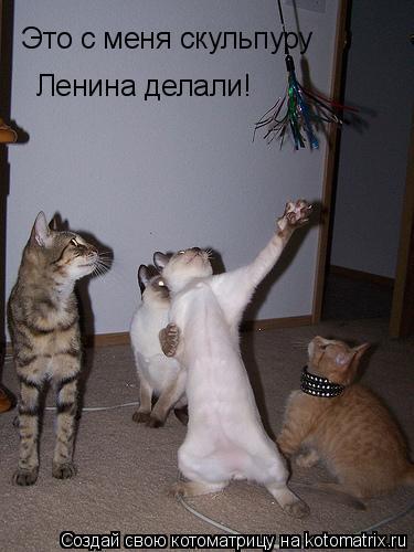 Котоматрица: Это с меня скульпуру  Ленина делали!