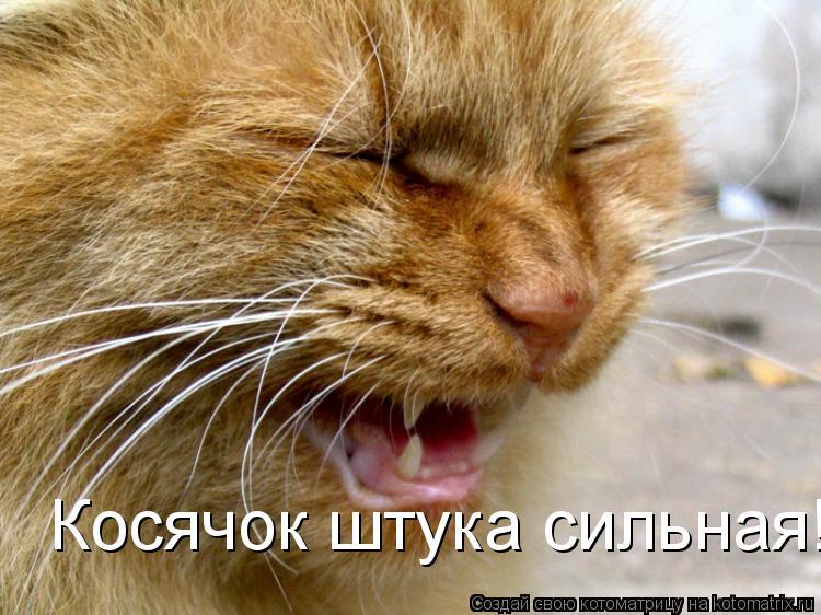 Котоматрица: Косячок штука сильная!