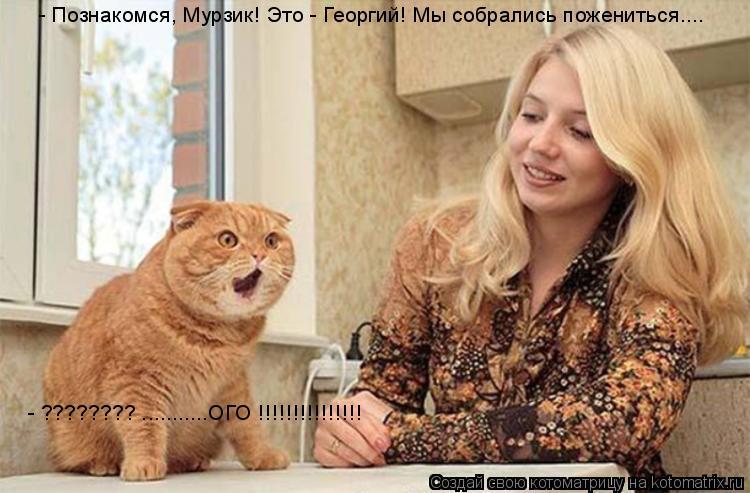 Котоматрица: - Познакомся, Мурзик! Это - Георгий! Мы собрались пожениться.... - ???????? ...........ОГО !!!!!!!!!!!!!!!