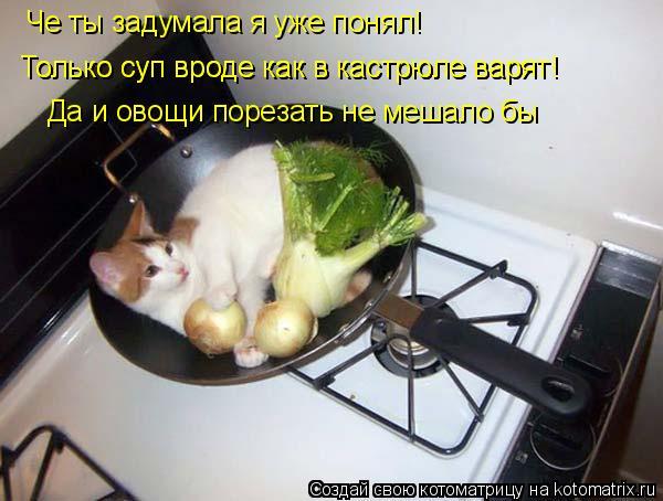Котоматрица: Че ты задумала я уже понял! Только суп вроде как в кастрюле варят! Только суп вроде как в кастрюле варят! Да и овощи порезать не мешало бы