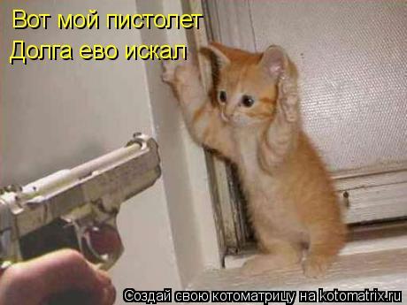 Котоматрица: Вот мой пистолет Долга ево искал