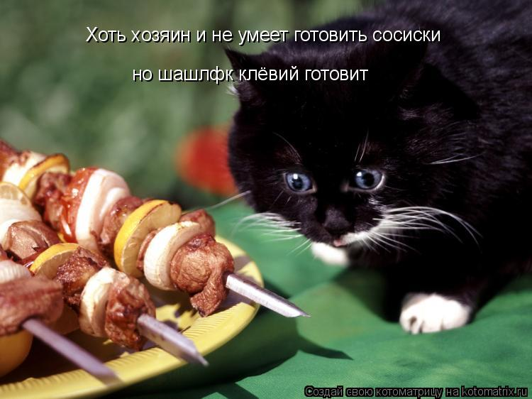 Котоматрица: Хоть хозяин и не умеет готовить сосиски но шашлфк клёвий готовит
