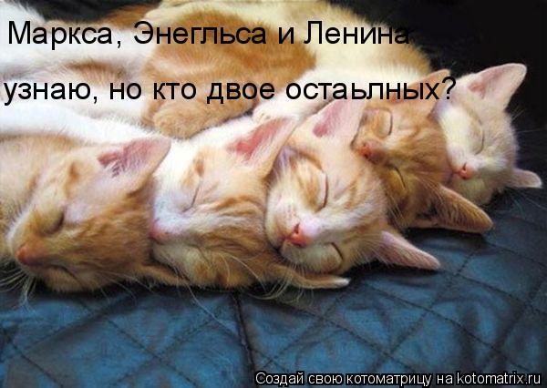 Котоматрица: Маркса, Энегльса и Ленина узнаю, но кто двое остаьлных?