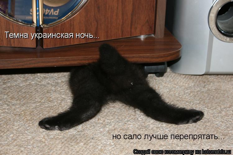 Котоматрица: Темна украинская ночь... но сало лучше перепрятать...