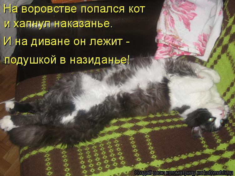 Котоматрица: На воровстве попался кот и хапнул наказанье. И на диване он лежит - подушкой в назиданье!