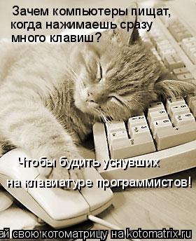 Котоматрица: Зачем компьютеры пищат, когда нажимаешь сразу много клавиш? Чтобы будить уснувших на клавиатуре программистов!