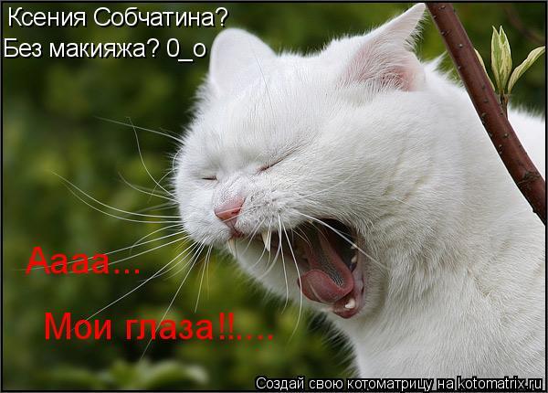Котоматрица: Ксения Собчатина? Без макияжа? 0_о Аааа... Мои глаза!!....