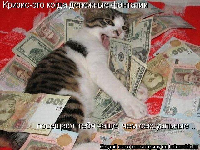 Котоматрица: Кризис-это когда денежные фантазии посещают тебя чаще, чем сексуальные....