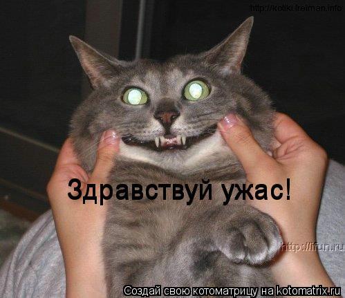 Котоматрица: Здравствуй ужас! Здравствуй ужас!