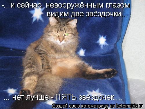 Котоматрица: -...и сейчас, невооружённым глазом  видим две звёздочки... ... нет лучше - ПЯТЬ звёздочек....