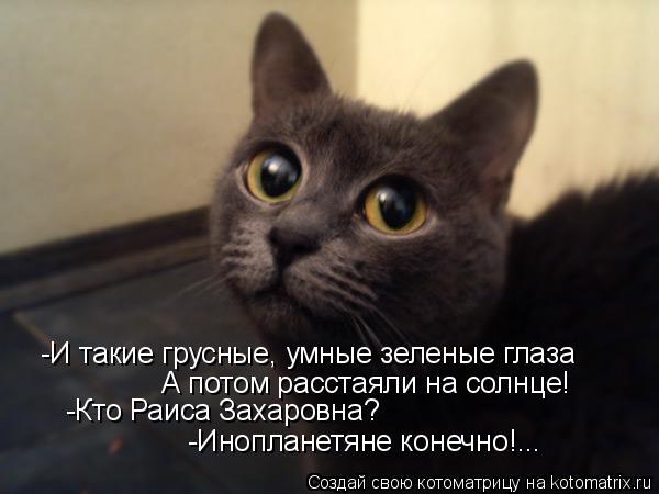 Котоматрица: -И такие грусные, умные зеленые глаза А потом расстаяли на солнце! -Кто Раиса Захаровна? -Инопланетяне конечно!...