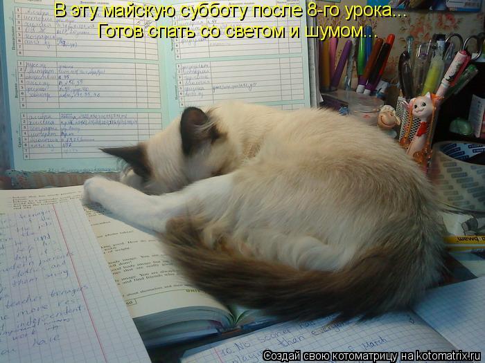 Котоматрица: В эту майскую субботу после 8-го урока... Готов спать со светом и шумом...