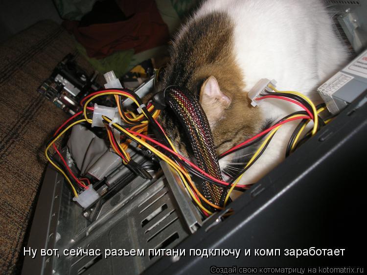 Котоматрица: Ну вот, сейчас разъем питани подключу и комп заработает