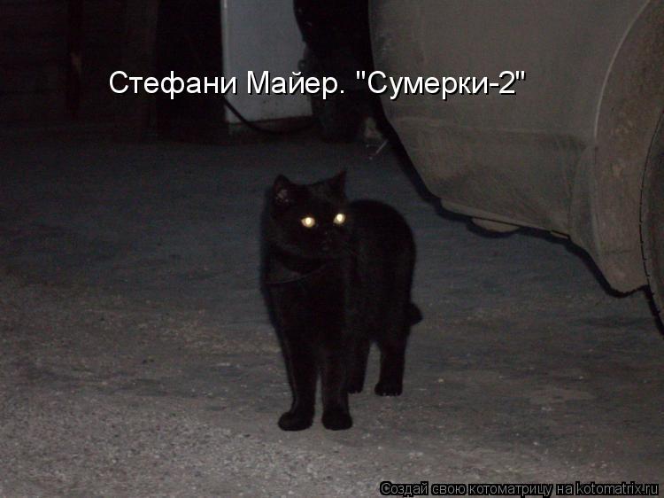 """Котоматрица: Стефани Майер. """"Сумерки-2"""""""