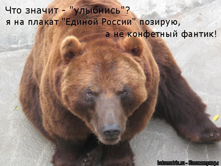 """Котоматрица: Что значит - """"улыбнись""""? я на плакат """"Единой России"""" позирую,  а не конфетный фантик!"""