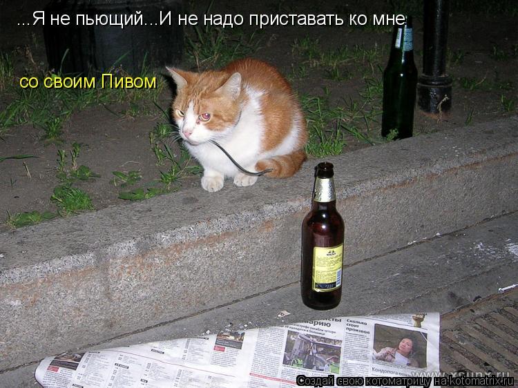 Котоматрица: ...Я не пьющий...И не надо приставать ко мне со своим Пивом