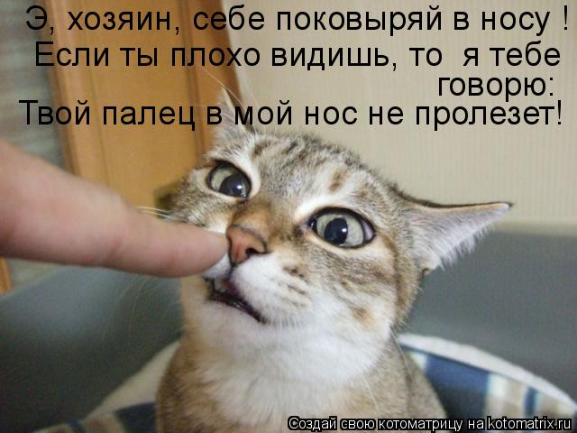 Котоматрица: Э, хозяин, себе поковыряй в носу ! Если ты плохо видишь, то  я тебе Твой палец в мой нос не пролезет! говорю: