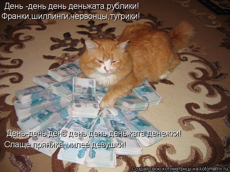 Котоматрица: День -день день деньжата рублики! Франки,шиллинги,червонцы,тугрики! День-день день день день деньжата денежки! Слаще пряника,милее девушки!