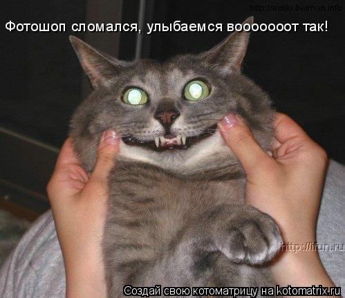 Котоматрица: Фотошоп сломался, улыбаемся вооооооот так!