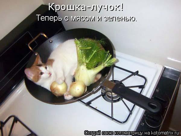 Котоматрица: Теперь с мясом и зеленью. Крошка-лучок!