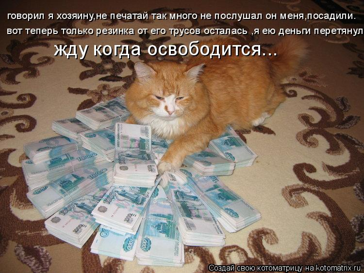 Котоматрица: говорил я хозяину,не печатай так много не послушал он меня,посадили. вот теперь только резинка от его трусов осталась ,я ею деньги перетянул