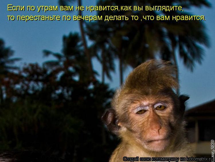 Котоматрица: Если по утрам вам не нравится,как вы выглядите, то перестаньте по вечерам делать то ,что вам нравится.