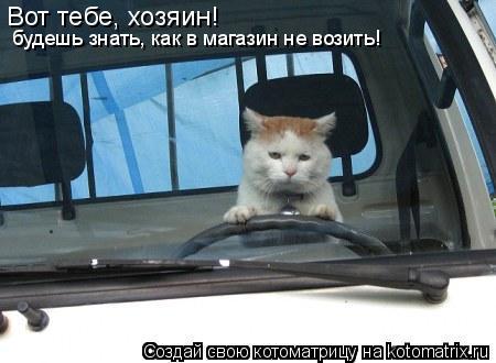 Котоматрица: Вот тебе, хозяин!  будешь знать, как в магазин не возить!