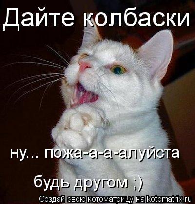 Котоматрица: Дайте колбаски ну... пожа-а-а-алуйста будь другом ;)