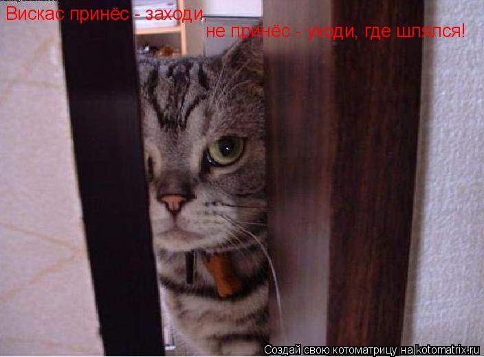 Котоматрица: Вискас принёс - заходи, не принёс - уходи, где шлялся!