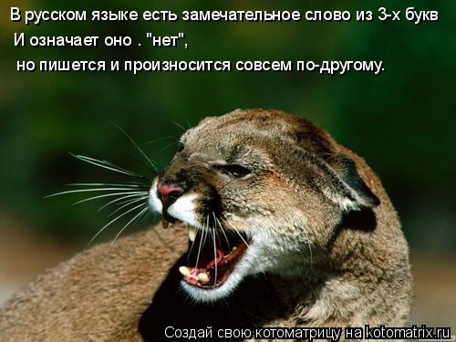 """Котоматрица: В русском языке есть замечательное слово из 3-х букв И означает оно – """"нет"""", но пишется и произносится совсем по-другому."""