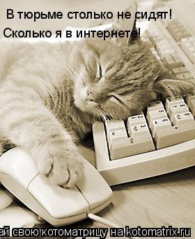 Котоматрица: В тюрьме столько не сидят! Сколько я в интернете!
