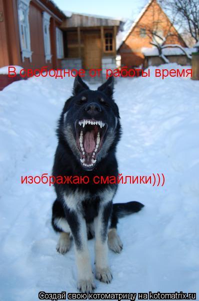 Котоматрица: В свободное от работы время изображаю смайлики)))