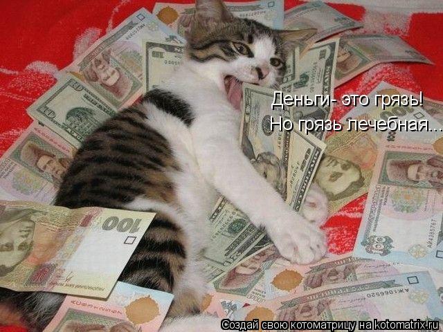 Котоматрица: Деньги- это грязь! Но грязь лечебная...