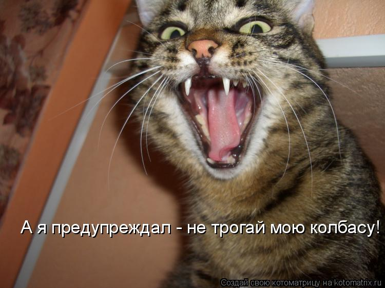 Котоматрица: А я предупрежда - не трогай мою колбасу! А я предупреждал - не трогай мою колбасу!