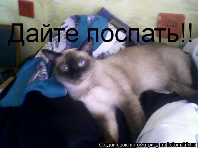 Котоматрица: Дайте поспать!!