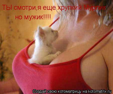 Котоматрица: ТЫ смотри,я еще хрупкий Мурлик но мужик!!!!