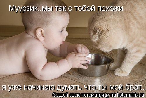 Котоматрица: Муурзик..мы так с тобой похожи я уже начинаю думать что ты мой брат...